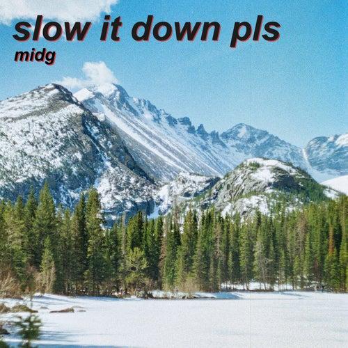Slow It Down Pls by Midg