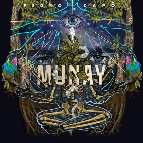 MUNAY von Pedro Capó