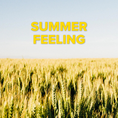 Summer Feeling by Various Artists