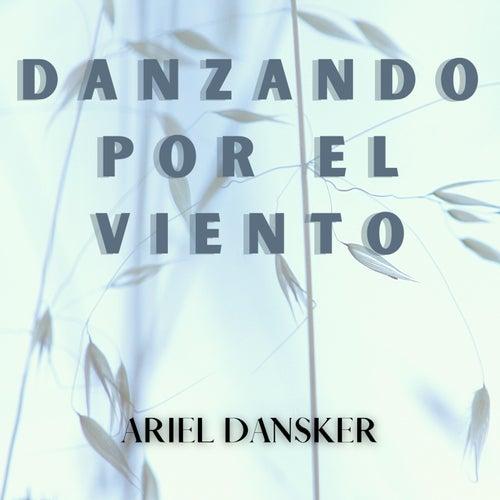 danzando por el viento by Ariel Dansker