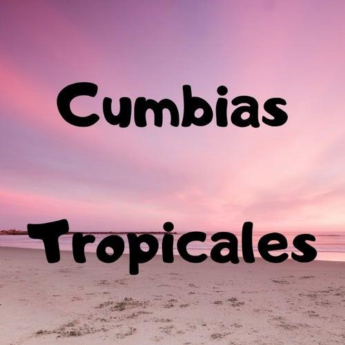 Cumbias Tropicales by Armando Hernandez, Fito Olivares y Su Grupo, Lisandro Meza, Los Tupamaros, Rodolfo Aicardi