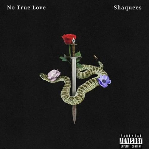 No True Love de Shaquees