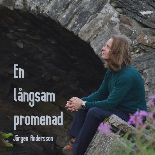 En långsam promenad by Jörgen Andersson