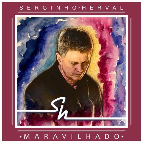 Maravilhado by Serginho Herval