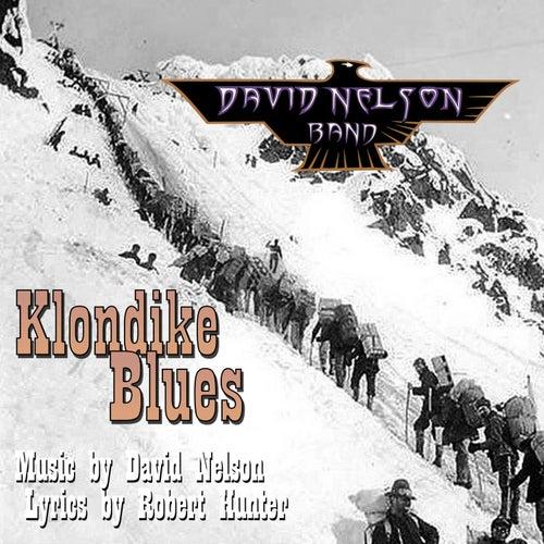 Klondike Blues by David Nelson Band
