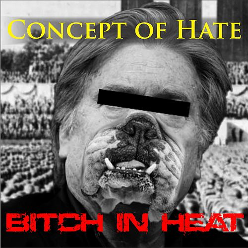 Bitch in Heat by Concept of Hate