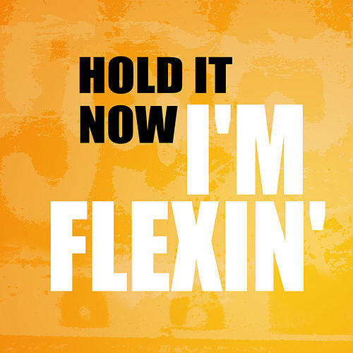 Hold It Now I'm Flexin by Hip Hop's Finest