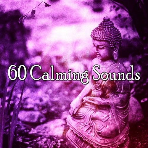 60 Calming Sounds von Entspannungsmusik
