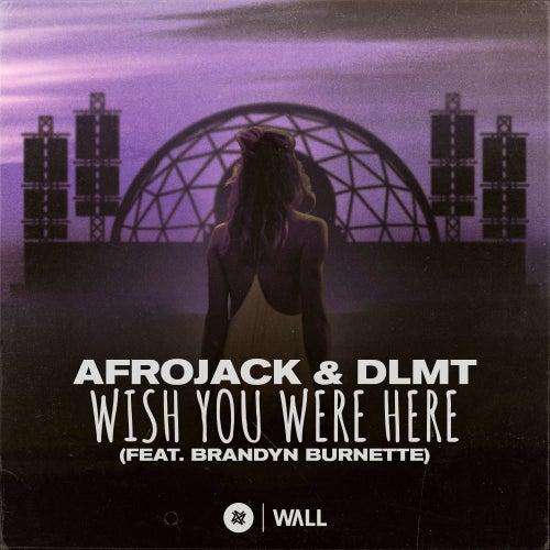 Wish You Were Here (feat. Brandyn Burnette) de Afrojack