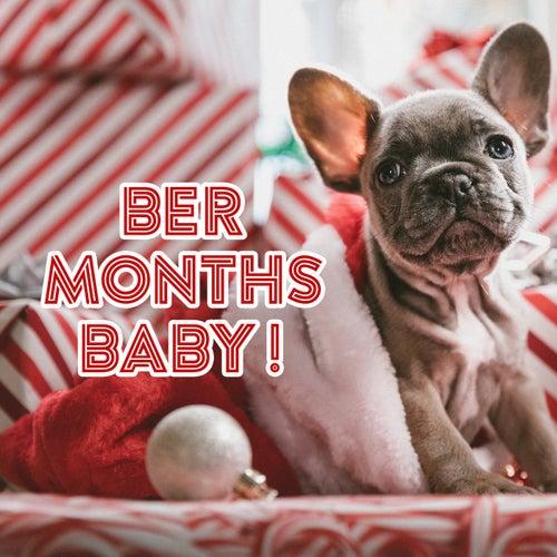 Ber Months Baby! de Various Artists