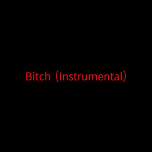 Bitch (Instrumental) von Rob $Tone