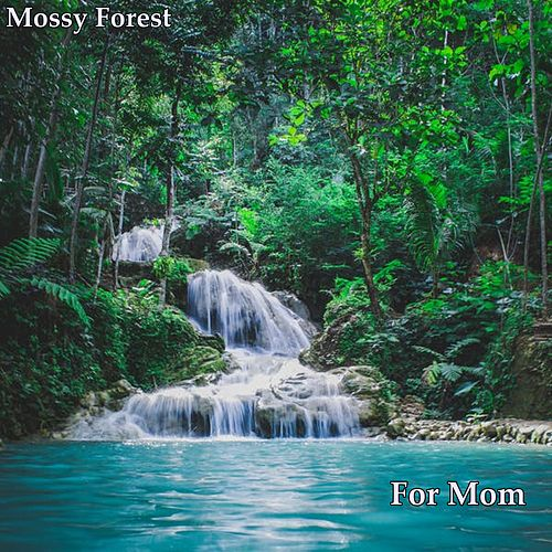 For Mom by Mossy Forest