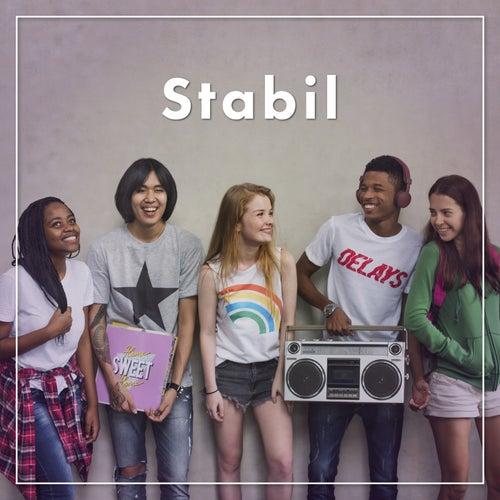 Stabil von Various Artists
