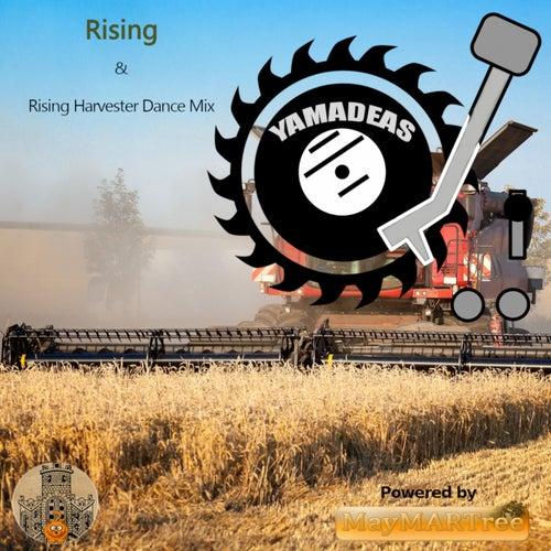 Rising von Yamadeas