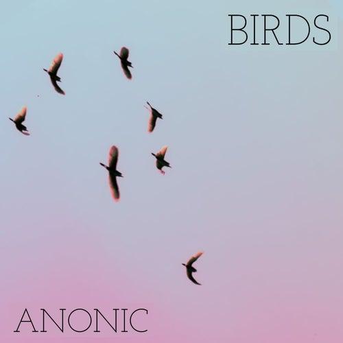 Birds de Anonic