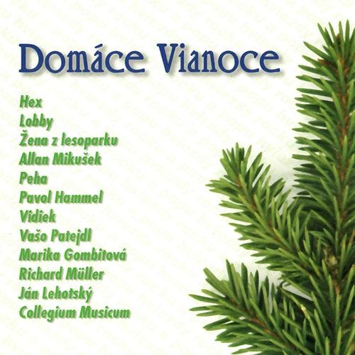 Domáce Vianoce de Various Artists
