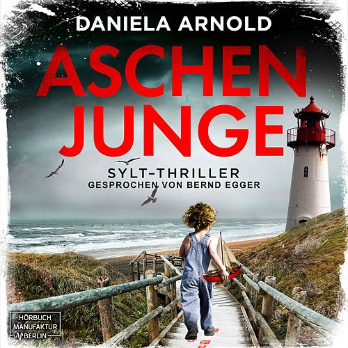 Aschenjunge (ungekürzt) von Daniela Arnold