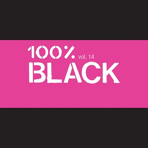 100% Black Vol. 14 by Various Artists