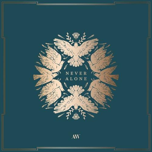 Never Alone de Aaron Shust