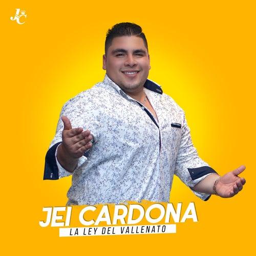 Llego Navidad von Jei Cardona