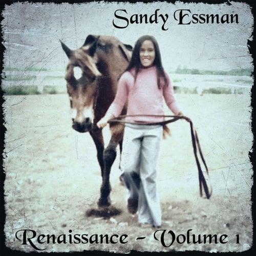 Renaissance, Vol. 1 by Sandy Essman