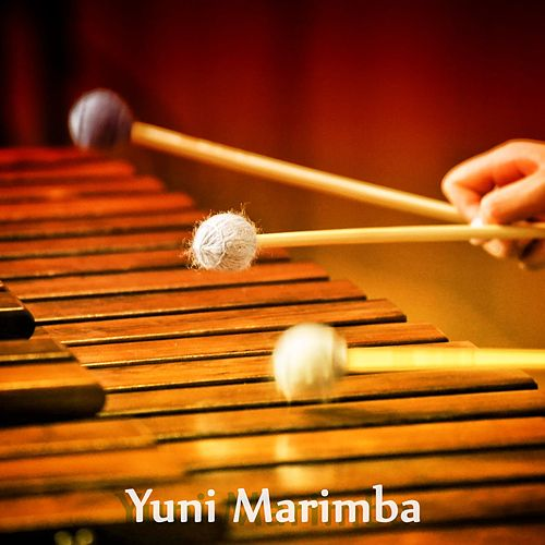 Marimba Collection von Yuni Marimba