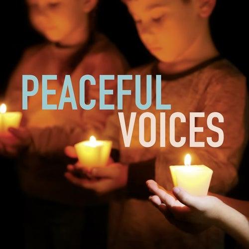 Peaceful Voices von Various Artists