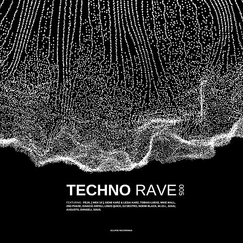 Techno Rave 005 by Various Artists