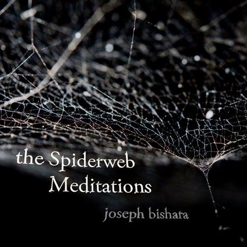 the Spiderweb Meditations by Joseph Bishara