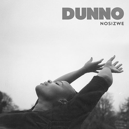 Dunno by Nosizwe
