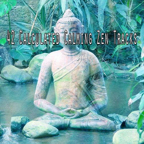42 Calculated Calming Zen Tracks von Entspannungsmusik