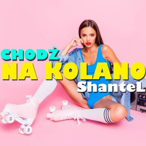 Chodź na kolano (Radio Edit) de Shantel