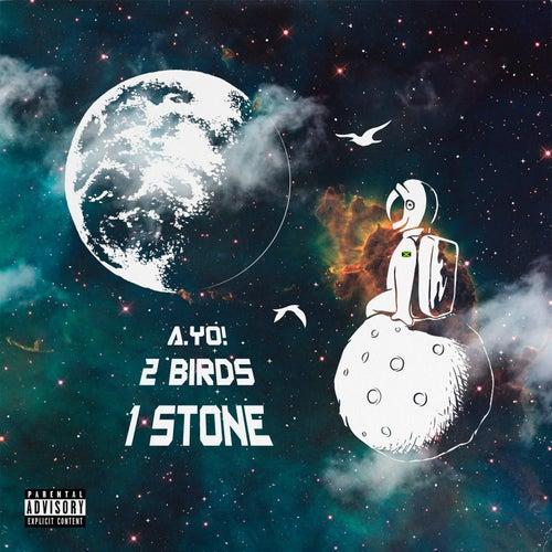 2 Birds 1 Stone - EP de Ayo
