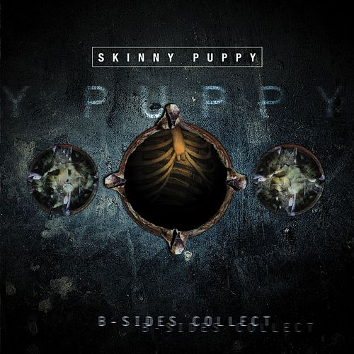 B-Sides Collection de Skinny Puppy