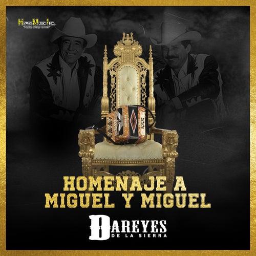 Homenaje a Miguel y Miguel by Dareyes De La Sierra