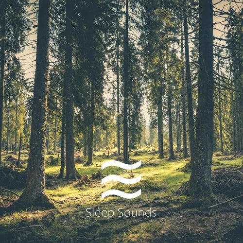 Easeful Womby Raining Noises for Kids Sleep von Alpha Waves