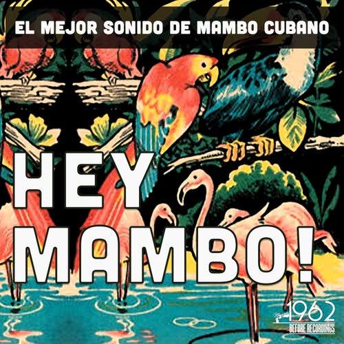 Hey Mambo! (El mejor sonido de mambo cubano) by Various Artists