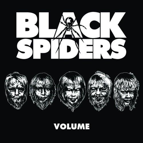 Volume de Black Spiders