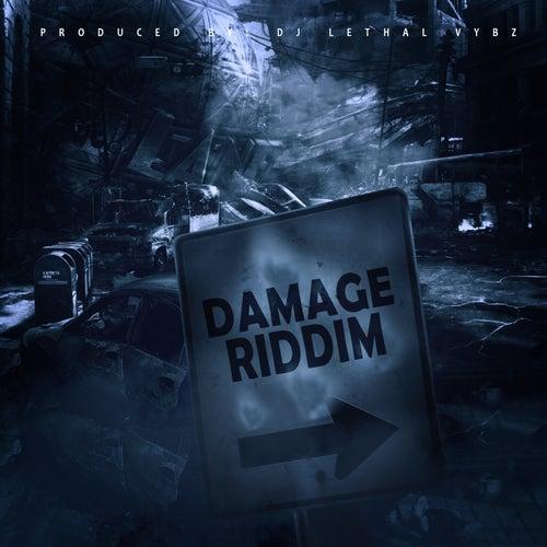 Damage Riddim by Various Artists