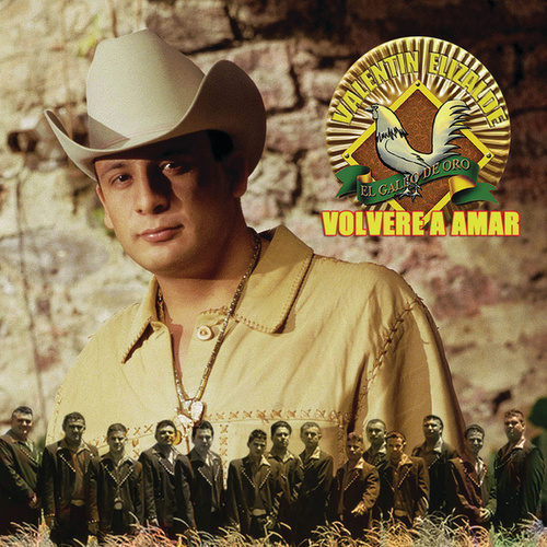 Volveré A Amar (International Version) de Valentin Elizalde