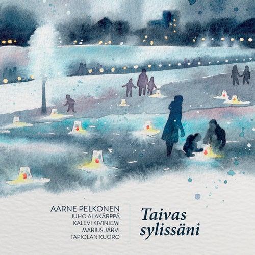 Taivas Sylissäni by Aarne Pelkonen