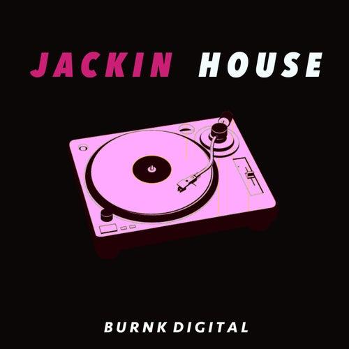 Jackin House de Various Artists