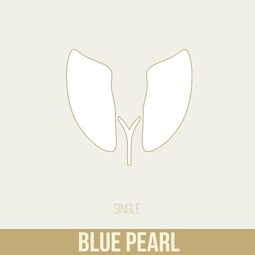 Blue Pearl by Charlus . Man of Many Faces