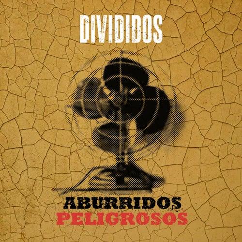 Aburridos Peligrosos (Nueva Versión) by Divididos