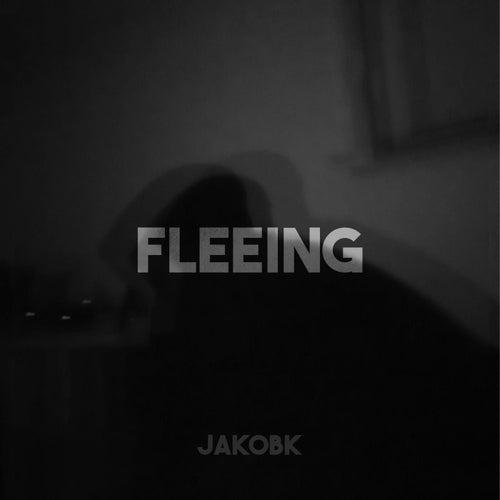 Fleeing von Jakob K.