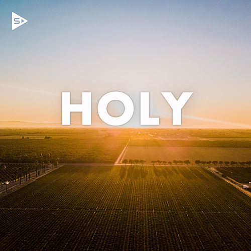 Holy by Various Artists