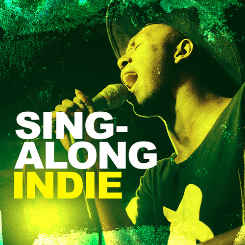 Sing-along Indie de Various Artists