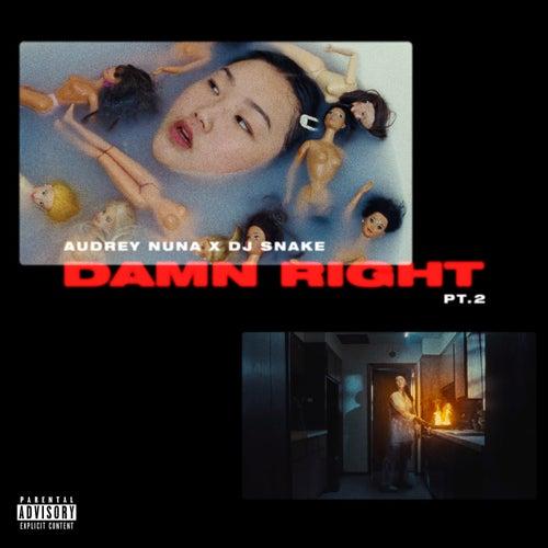 damn Right Pt. 2 by Audrey Nuna