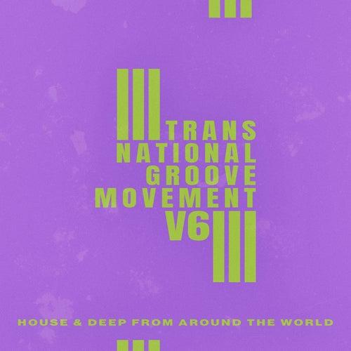 Trans-National Groove Movement - V6 de Various Artists