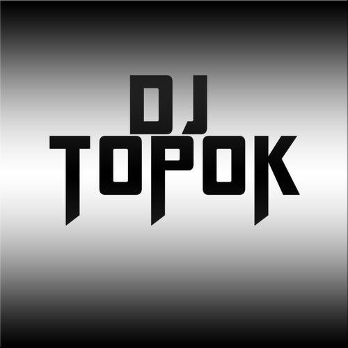 La Necesito by DJ Topok